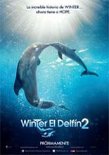 Winter el delfín 2